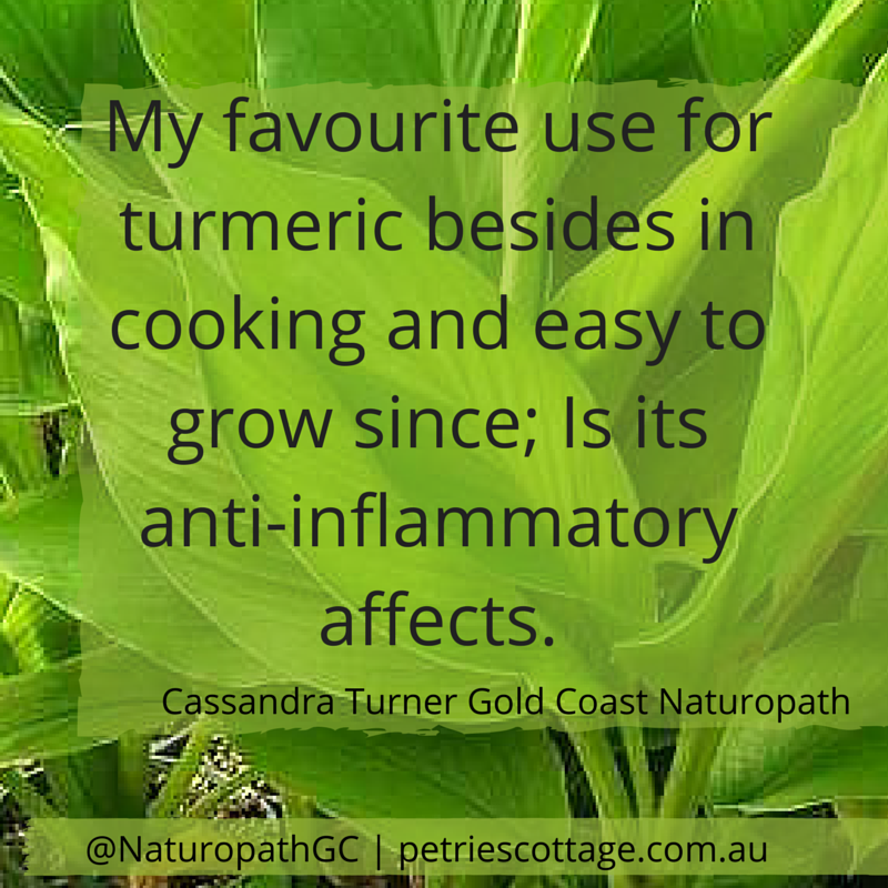 Gold Coast Naturopath: Anti inflammatory effects of tumeric