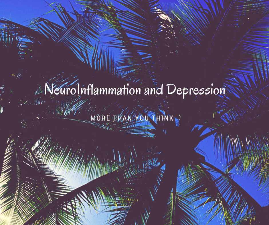 NeuroInflammation and Depression