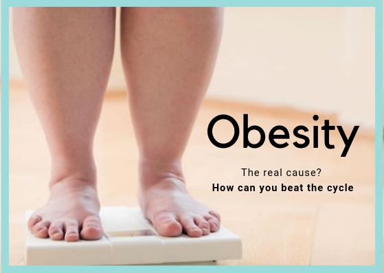 Obesity - The real cause