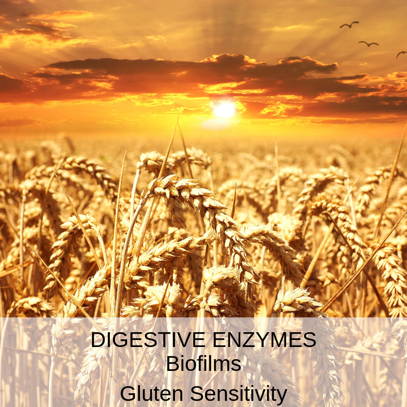 Digestive Enzymes, the missing link
